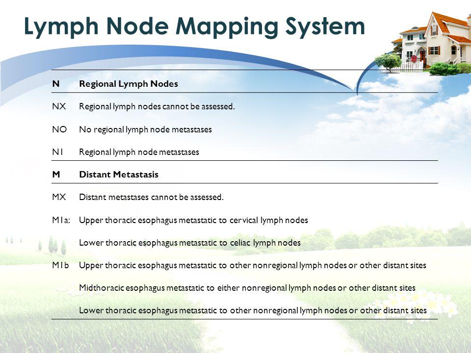 NRegional Lymph Nodes NXRegional lymph nodes cannot be assessed.