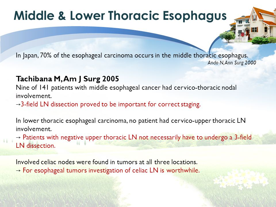 Middle & Lower Thoracic Esophagus In Japan, 70% of the esophageal carcinoma occurs in the middle thoracic esophagus.
