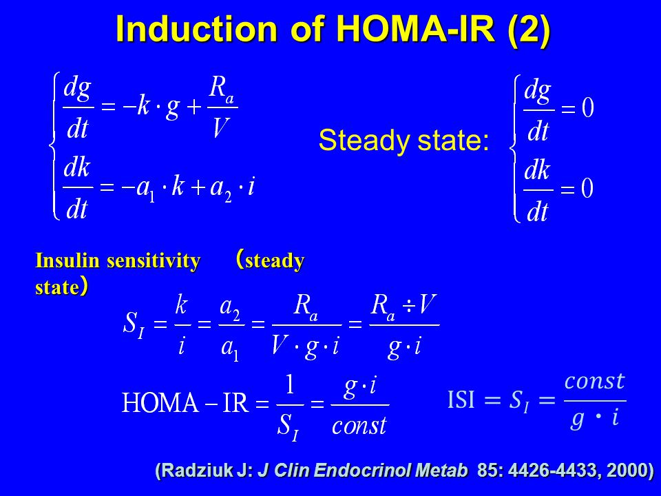 Insulin sensitivity ( steady state ) Steady state: (Radziuk J: J Clin Endocrinol Metab 85: 4426-4433, 2000) Induction of HOMA-IR (2)