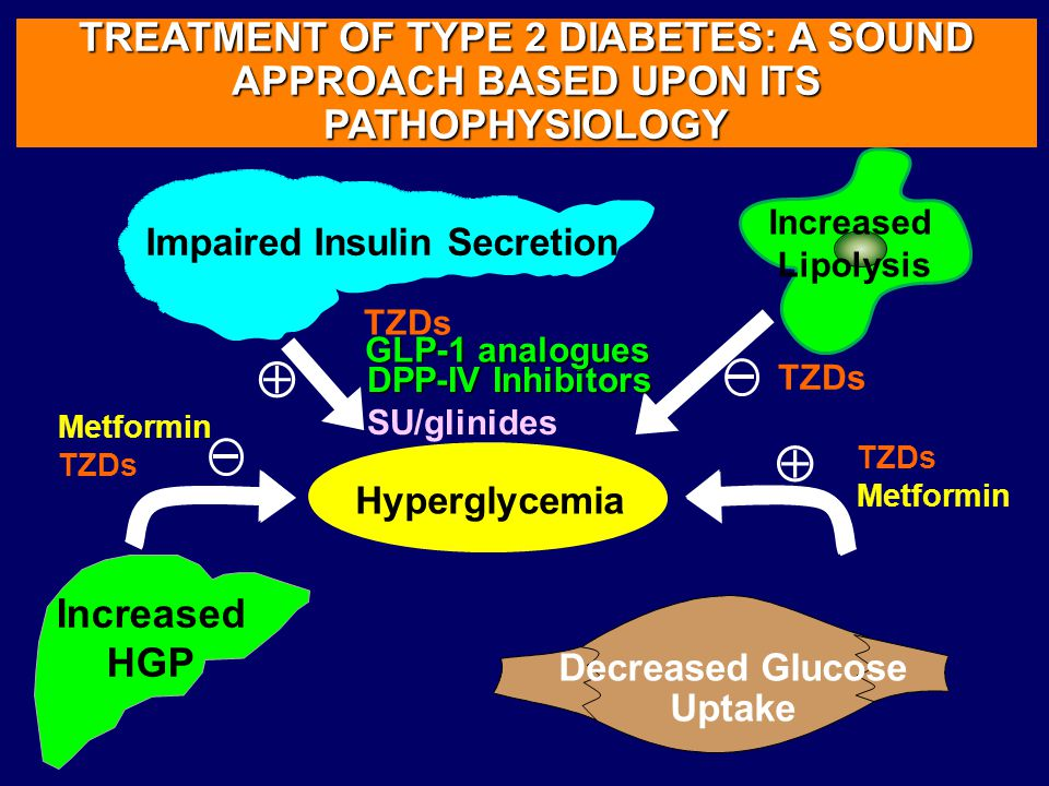 Hyperglycemia TREATMENT OF TYPE 2 DIABETES: A SOUND APPROACH BASED UPON ITS PATHOPHYSIOLOGY Impaired Insulin Secretion Hyperglycemia Decreased Glucose Uptake Increased Lipolysis DPP-IV Inhibitors SU/glinides  Metformin TZDs GLP-1 analogues Increased HGP TZDs Metformin 