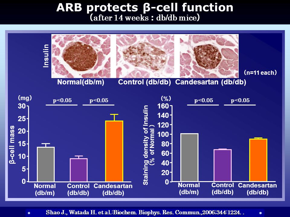 ARB protects β-cell function ( after 14 weeks : db/db mice ) Shao J., Watada H.