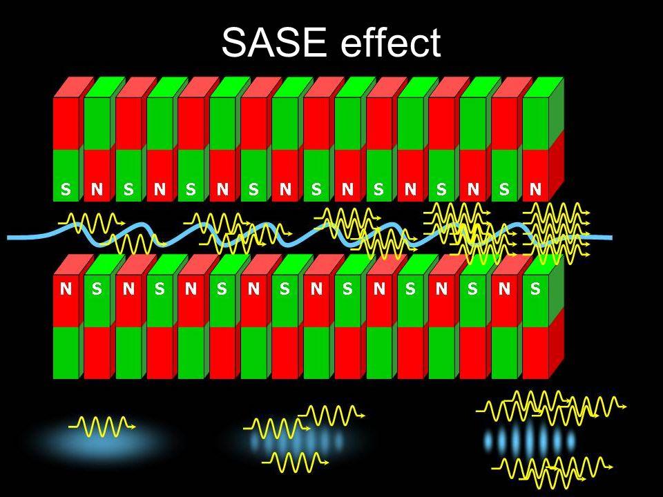 SASE effect