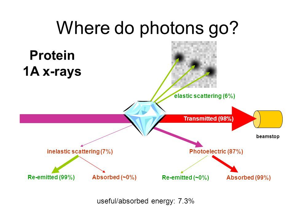 Where do photons go? beamstop elastic scattering (6%) Transmitted (98%) useful/absorbed energy: 7.3% inelastic scattering (7%)Photoelectric (87%) Prot