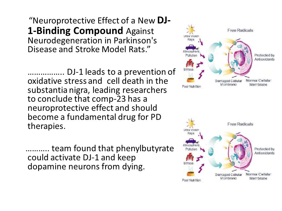 Neuroprotective Effect of a New DJ- 1-Binding Compound Against Neurodegeneration in Parkinson s Disease and Stroke Model Rats. ……………..