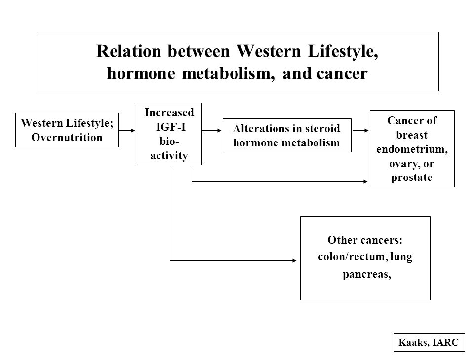 Relation between Western Lifestyle, hormone metabolism, and cancer Western Lifestyle; Overnutrition Increased IGF-I bio- activity Alterations in steroid hormone metabolism Cancer of breast endometrium, ovary, or prostate Kaaks, IARC Other cancers: colon/rectum, lung pancreas,