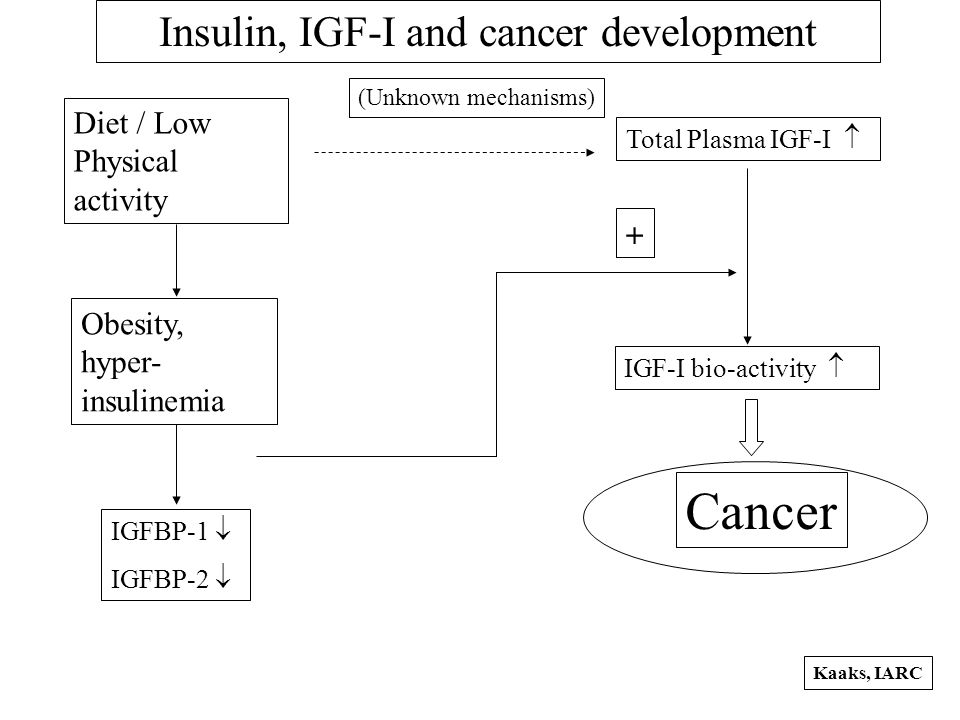 Total Plasma IGF-I  IGF-I bio-activity  IGFBP-1  IGFBP-2  Diet / Low Physical activity Obesity, hyper- insulinemia (Unknown mechanisms) Cancer  Insulin, IGF-I and cancer development Kaaks, IARC