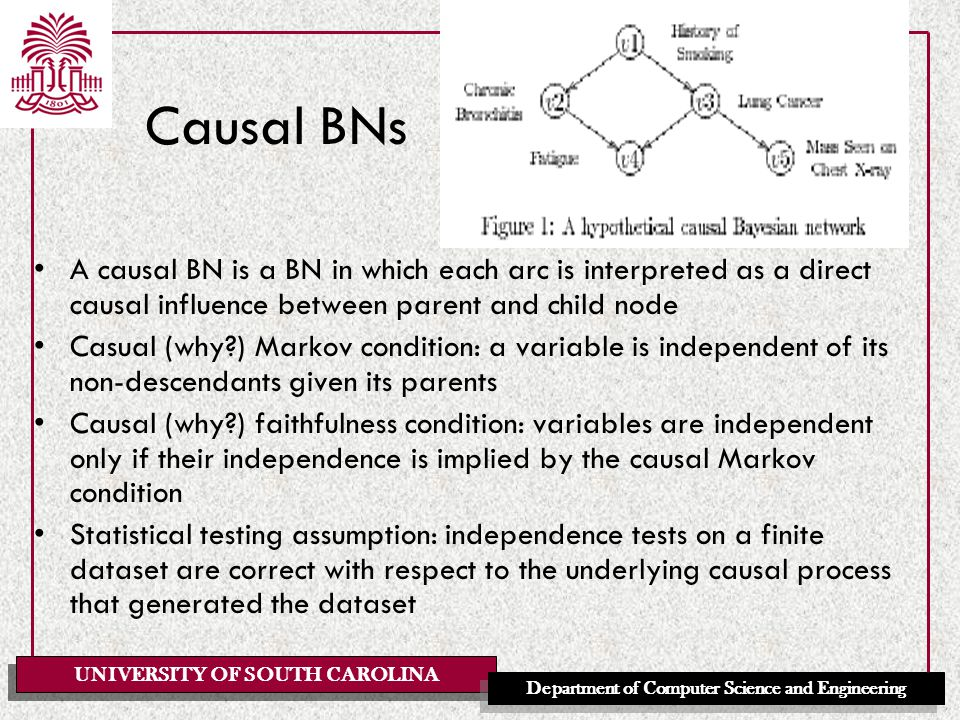 UNIVERSITY OF SOUTH CAROLINA Department of Computer Science and Engineering Causal BNs A causal BN is a BN in which each arc is interpreted as a direc