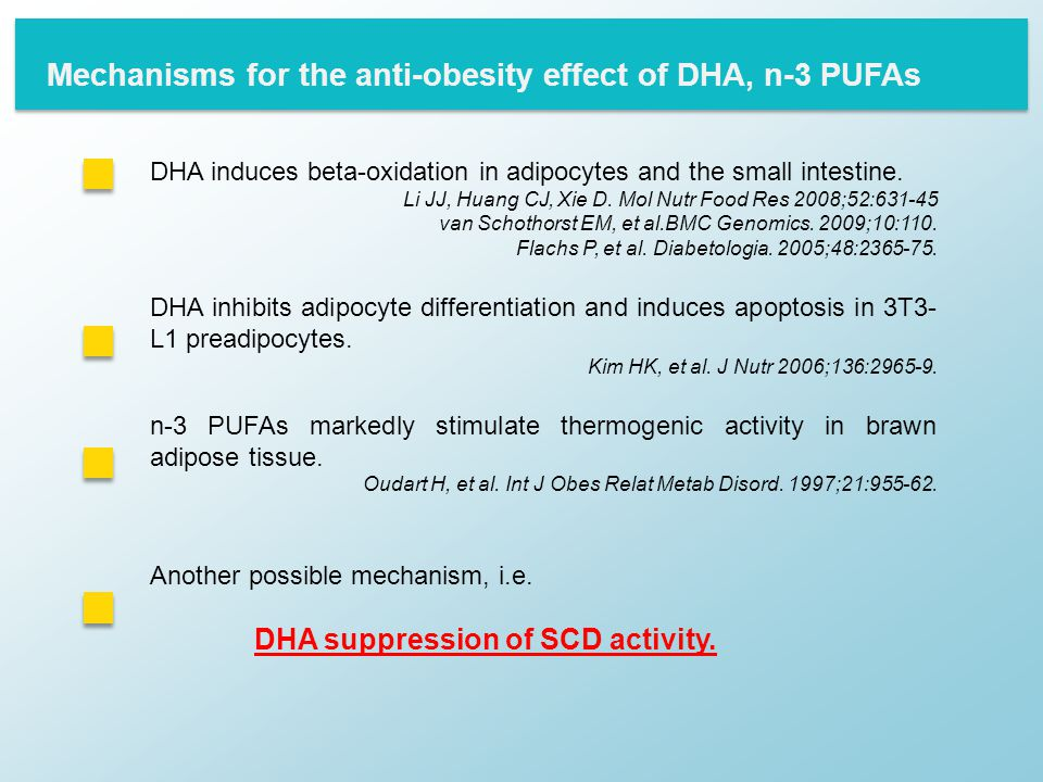 DHA induces beta-oxidation in adipocytes and the small intestine.