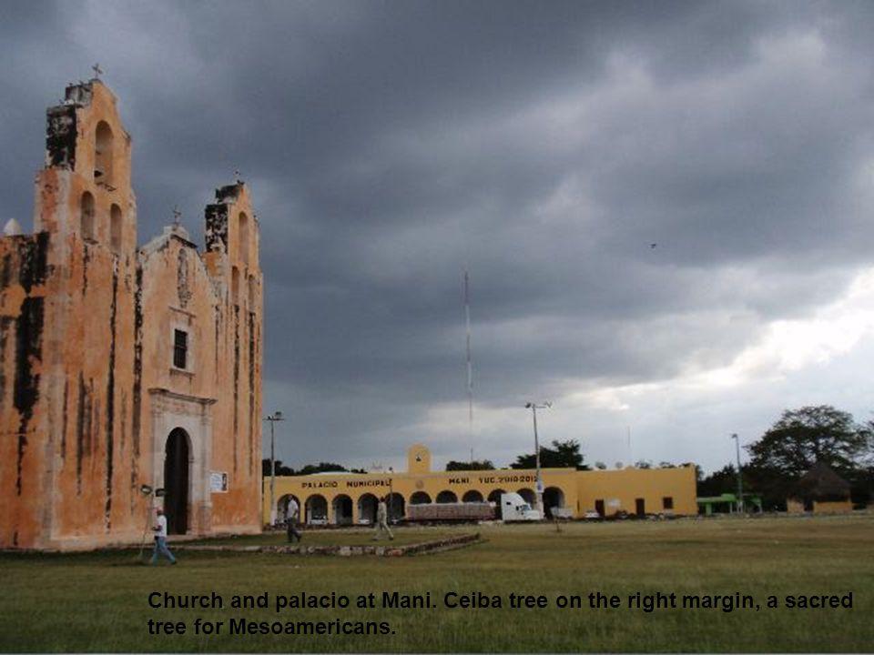 Church and palacio at Mani. Ceiba tree on the right margin, a sacred tree for Mesoamericans.