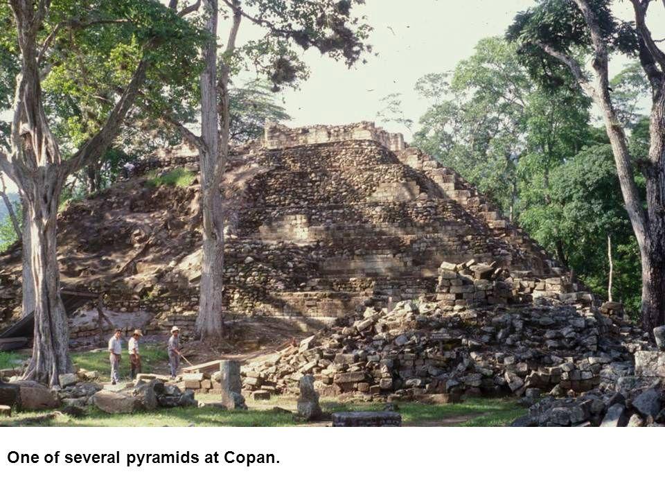 One of several pyramids at Copan.