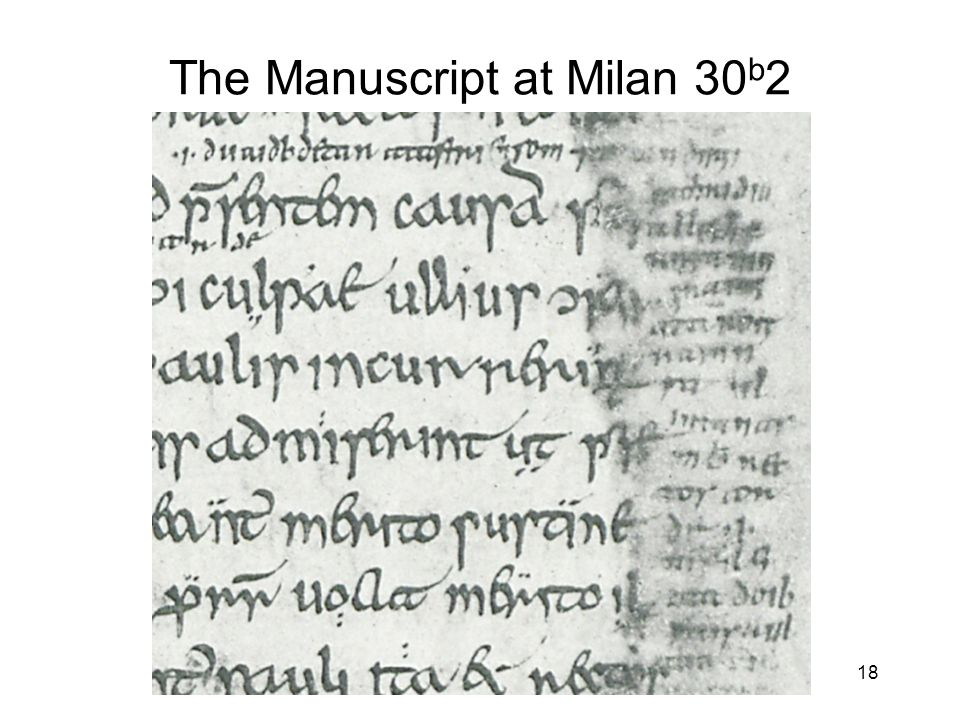 18 The Manuscript at Milan 30 b 2