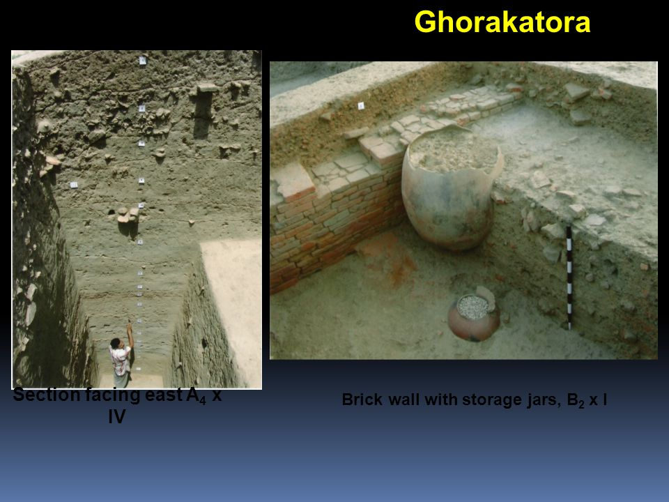 Ghorakatora Brick wall with storage jars, B 2 x I Section facing east A 4 x IV