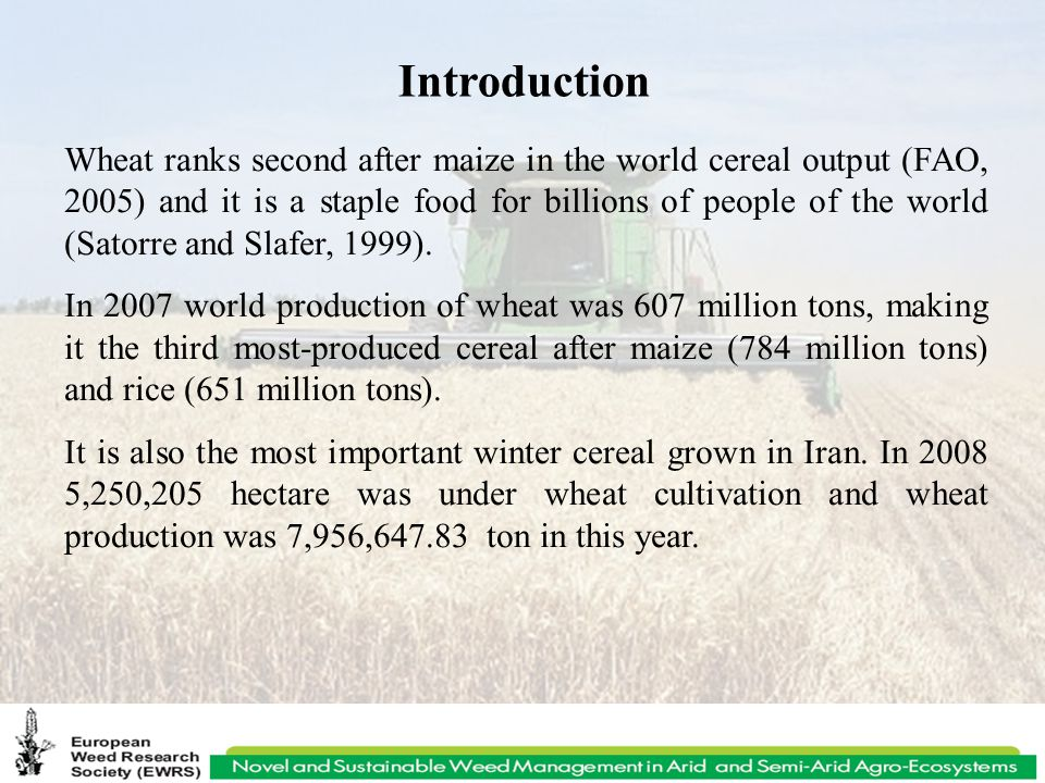 Introduction Wheat ranks second after maize in the world cereal output (FAO, 2005) and it is a staple food for billions of people of the world (Satorre and Slafer, 1999).