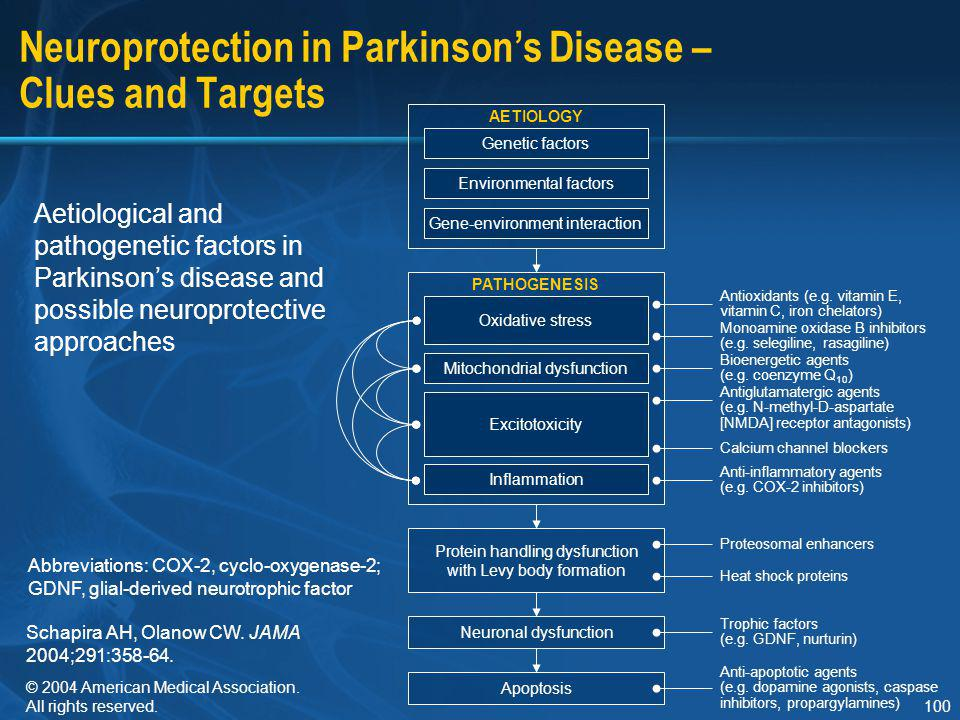 100 Neuroprotection in Parkinson's Disease – Clues and Targets Aetiological and pathogenetic factors in Parkinson's disease and possible neuroprotecti