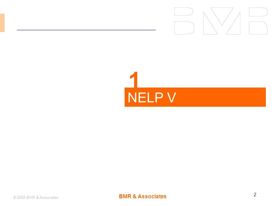 BMR & Associates 2 © 2005 BMR & Associates NELP V 1
