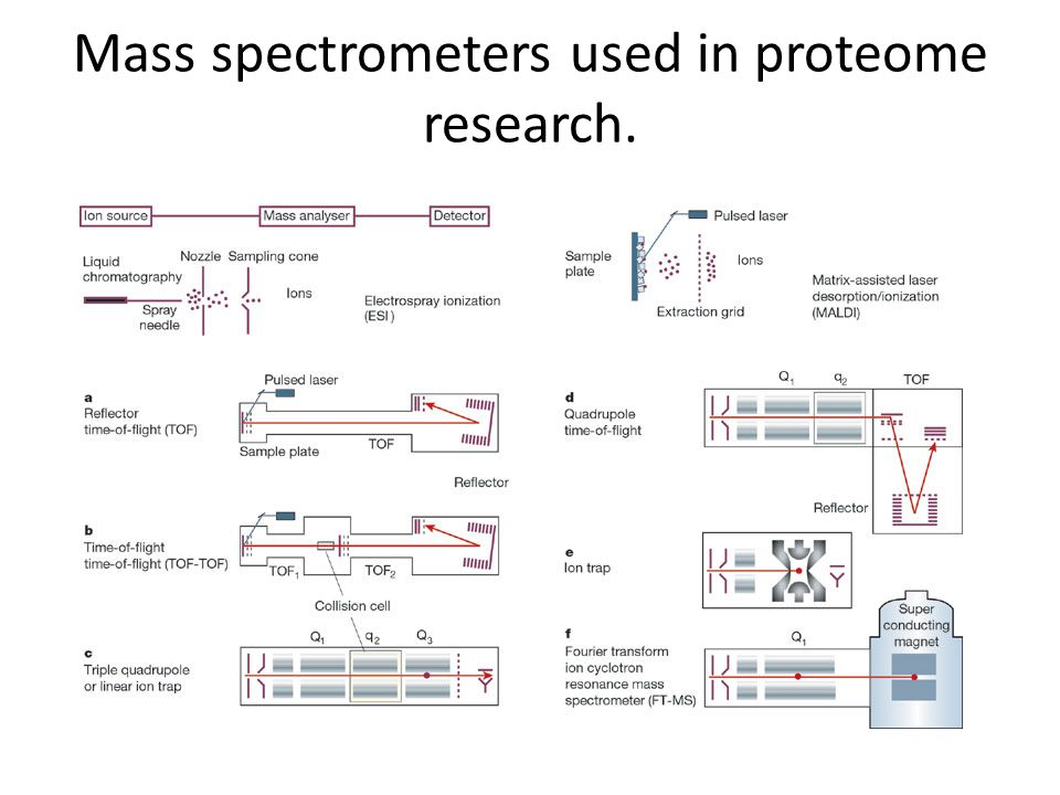 Mass spectrometers used in proteome research.