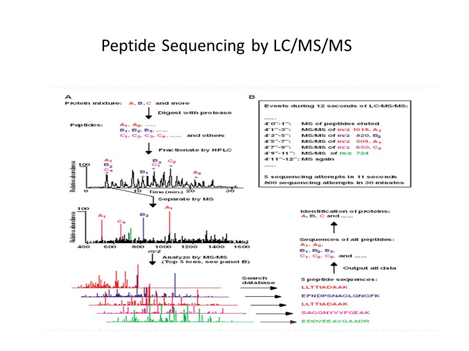 Peptide Sequencing by LC/MS/MS