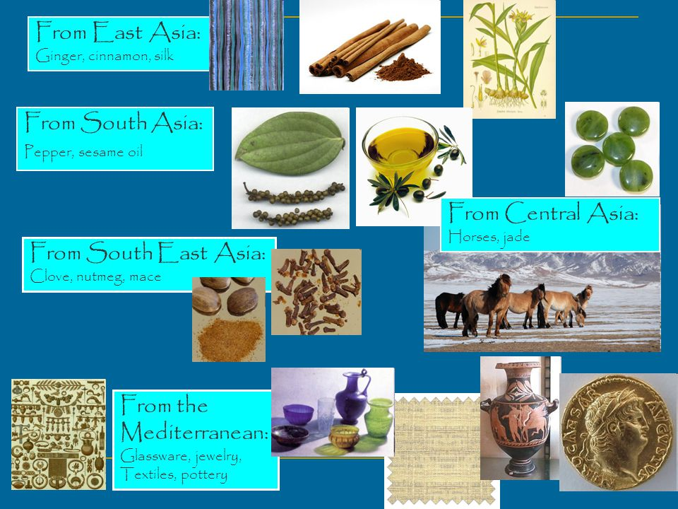 From East Asia: Ginger, cinnamon, silk From South Asia: Pepper, sesame oil From South East Asia: Clove, nutmeg, mace From the Mediterranean: Glassware, jewelry, Textiles, pottery From Central Asia: Horses, jade