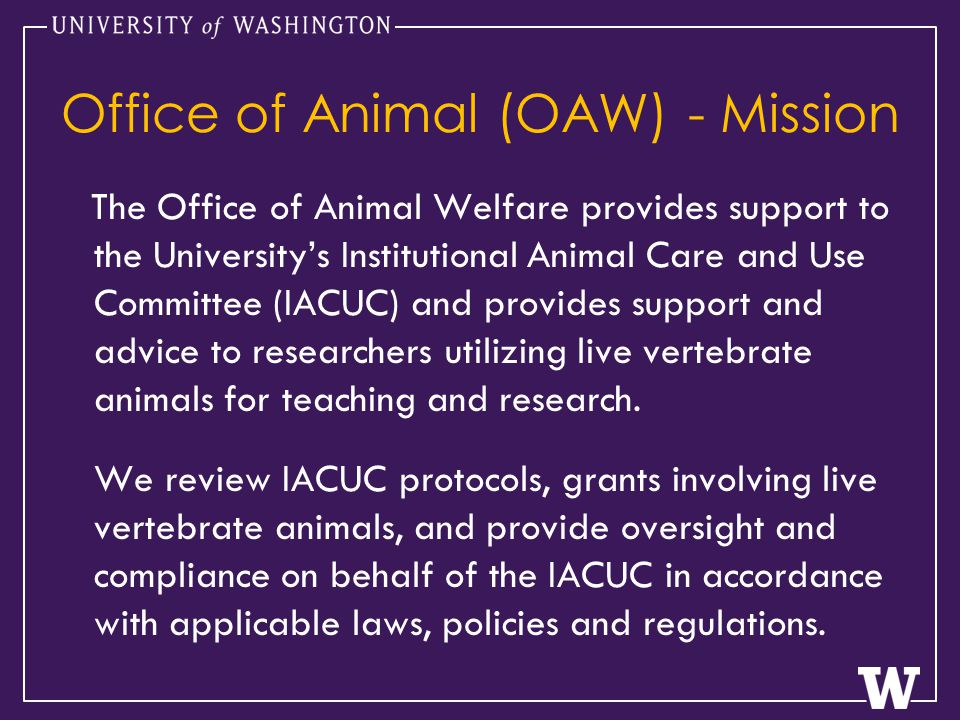 Office of Animal (OAW) - Mission The Office of Animal Welfare provides support to the University's Institutional Animal Care and Use Committee (IACUC) and provides support and advice to researchers utilizing live vertebrate animals for teaching and research.