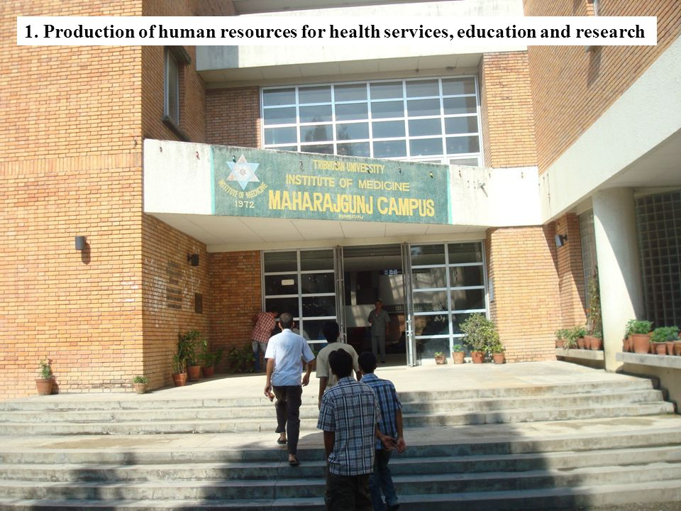 2. Provide health services through its health institutions