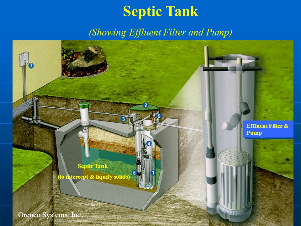 Septic Tank (Showing Effluent Filter and Pump) Septic Tank (to intercept & liquify solids) Effluent Filter & Pump Orenco Systems, Inc.
