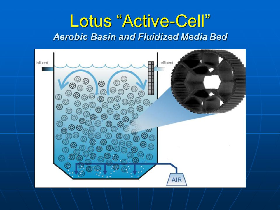Lotus Active-Cell Aerobic Basin and Fluidized Media Bed