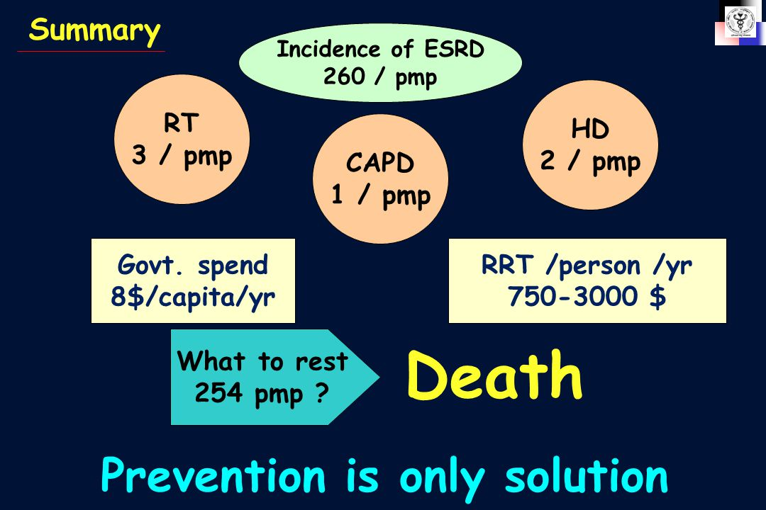 Summary Incidence of ESRD 260 / pmp RT 3 / pmp CAPD 1 / pmp HD 2 / pmp Govt.