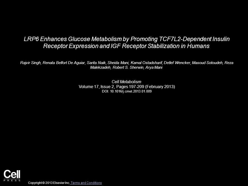 Figure 1 Cell Metabolism 2013 17, 197-209DOI: (10.1016/j.cmet.2013.01.009) Copyright © 2013 Elsevier Inc.