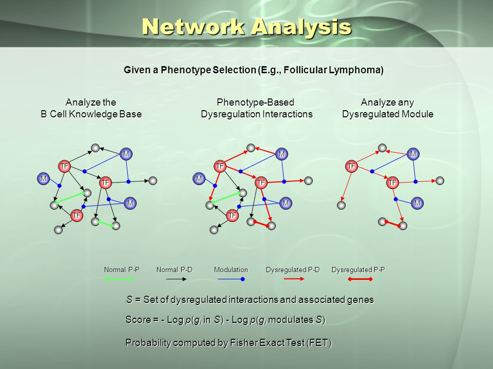 Network Analysis Dysregulated P-P Normal P-P Modulation Normal P-D Dysregulated P-D Analyze the B Cell Knowledge Base Given a Phenotype Selection (E.g