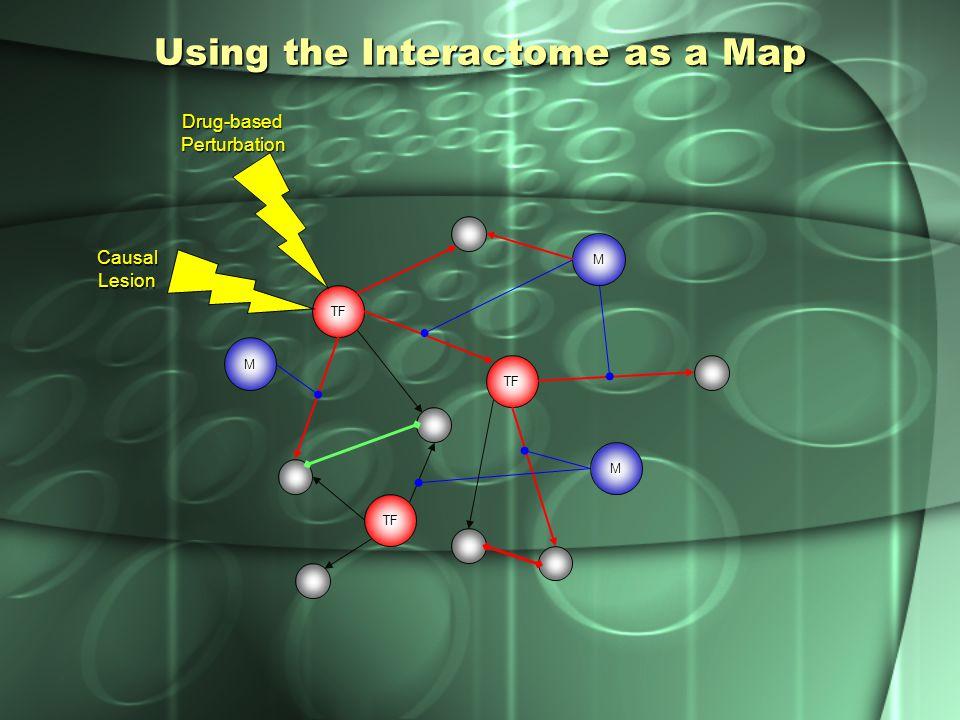 Edge Phenotype Map LOF GOF