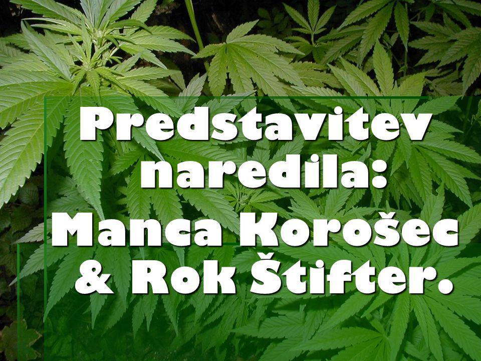 Predstavitev naredila: Manca Korošec & Rok Štifter.