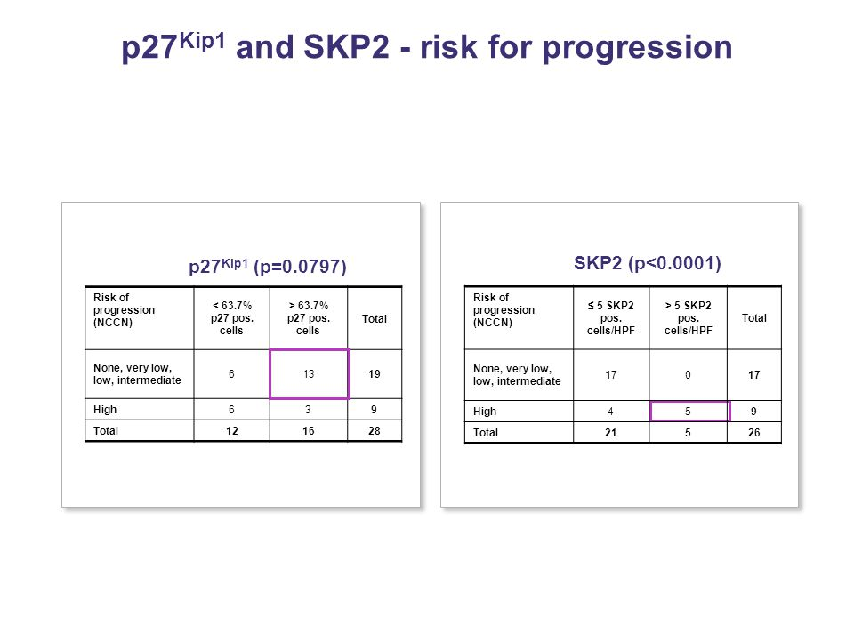 p27 Kip1 and SKP2 - risk for progression Risk of progression (NCCN) < 63.7% p27 pos.