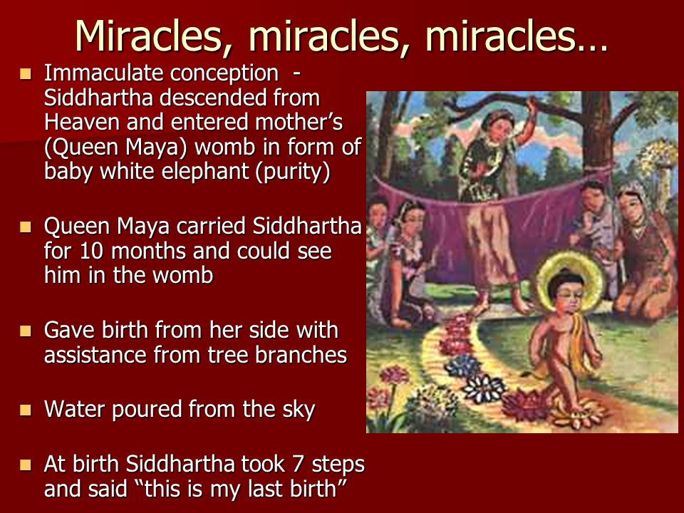 Miracles, miracles, miracles… Immaculate conception - Siddhartha descended from Heaven and entered mother's (Queen Maya) womb in form of baby white elephant (purity) Immaculate conception - Siddhartha descended from Heaven and entered mother's (Queen Maya) womb in form of baby white elephant (purity) Queen Maya carried Siddhartha for 10 months and could see him in the womb Queen Maya carried Siddhartha for 10 months and could see him in the womb Gave birth from her side with assistance from tree branches Gave birth from her side with assistance from tree branches Water poured from the sky Water poured from the sky At birth Siddhartha took 7 steps and said this is my last birth At birth Siddhartha took 7 steps and said this is my last birth