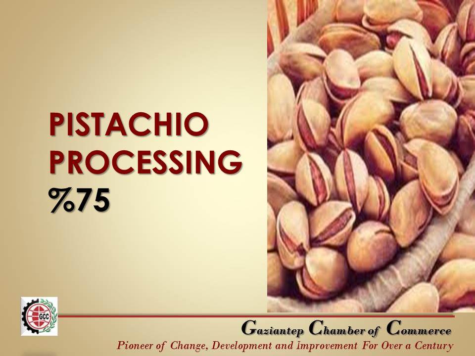 PISTACHIO PROCESSING %75