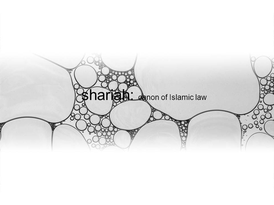 shariah: canon of Islamic law