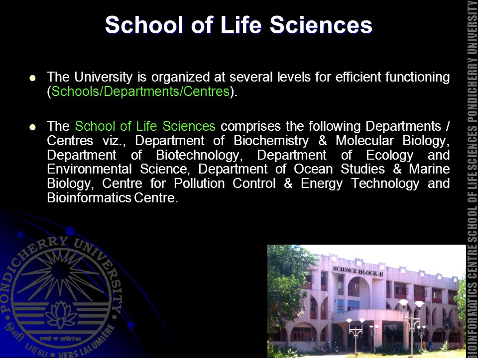 School of Life Sciences The University is organized at several levels for efficient functioning (Schools/Departments/Centres). The School of Life Scie