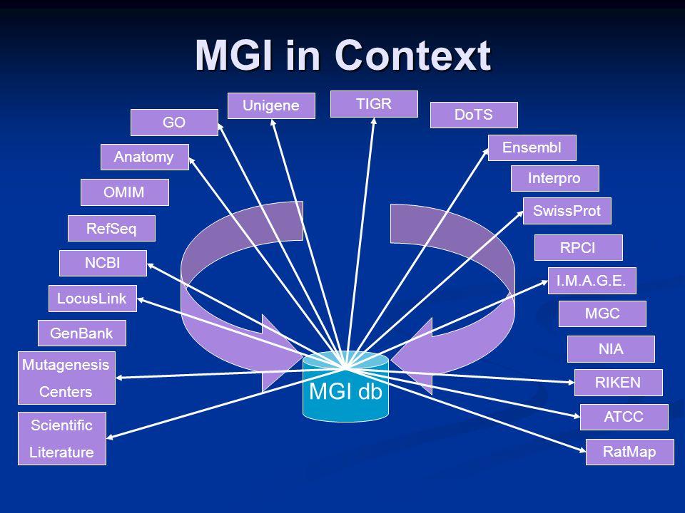 MGI in Context MGI db Scientific Literature Mutagenesis Centers GenBank LocusLink Unigene TIGR DoTS OMIM Ensembl GO Interpro SwissProt ATCC RIKEN Anatomy RPCI RatMap NIA MGC I.M.A.G.E.