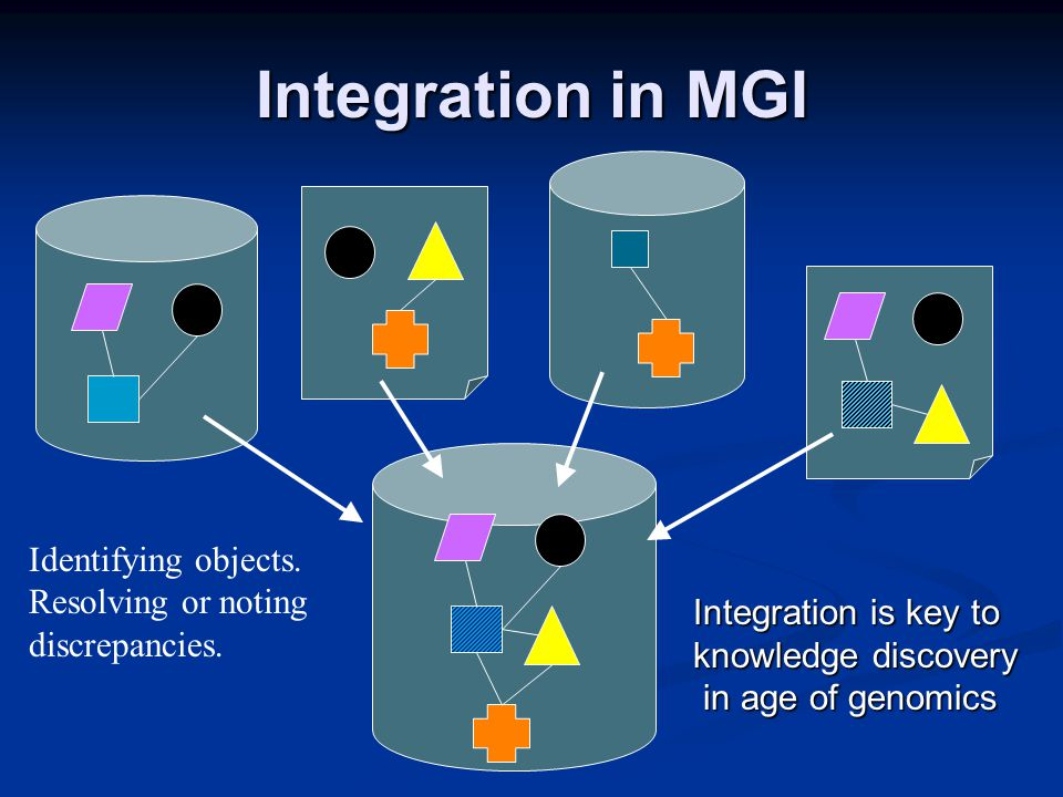 Integration in MGI Identifying objects. Resolving or noting discrepancies.