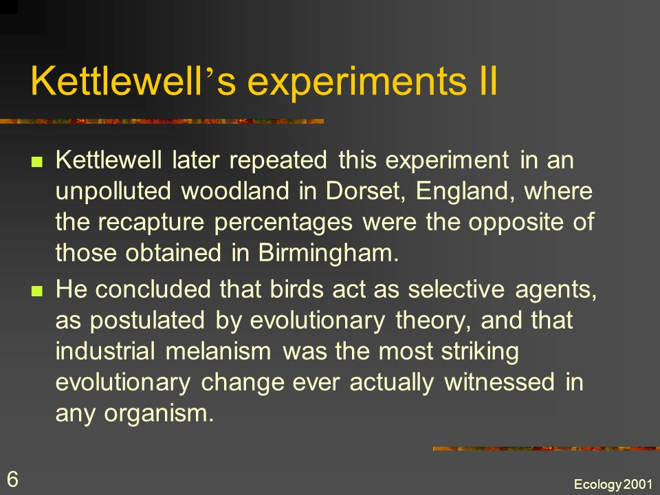 Ecology 2001 6 Kettlewell ' s experiments II Kettlewell later repeated this experiment in an unpolluted woodland in Dorset, England, where the recapture percentages were the opposite of those obtained in Birmingham.