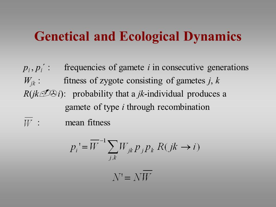 Genetical and Ecological Dynamics p i, p i ´ : frequencies of gamete i in consecutive generations W jk : fitness of zygote consisting of gametes j, k R(jk -> i): probability that a jk-individual produces a gamete of type i through recombination : mean fitness