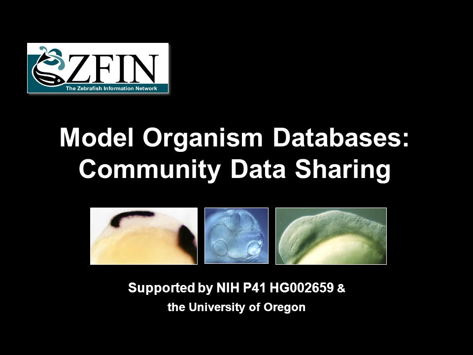Model Organism Databases: Community Data Sharing Supported by NIH P41 HG002659 & the University of Oregon