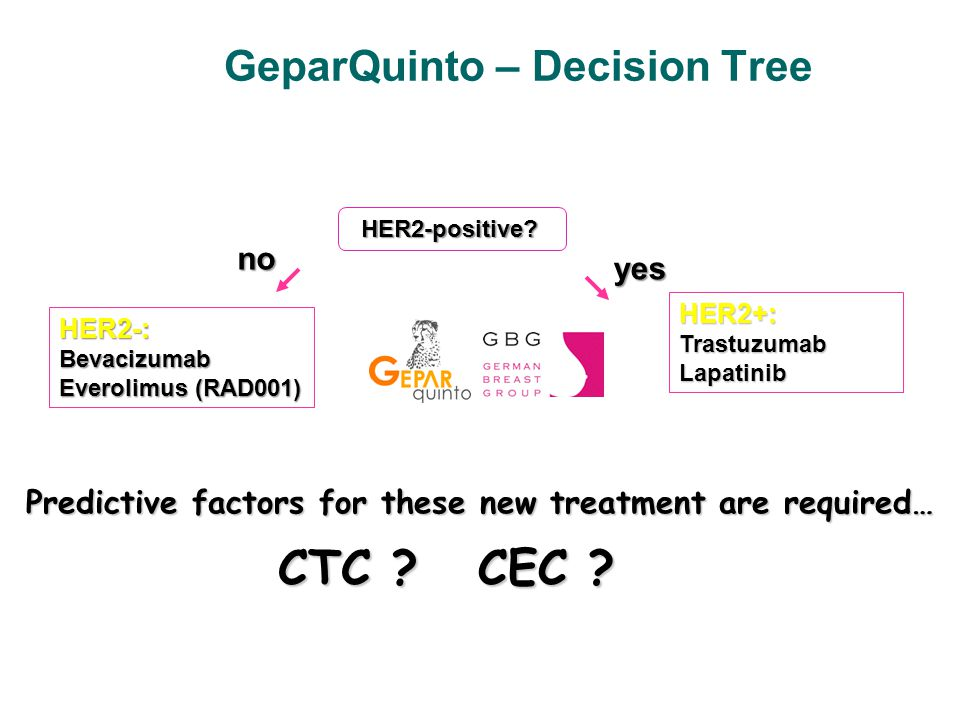 GeparQuinto – Decision Tree HER2-positive.