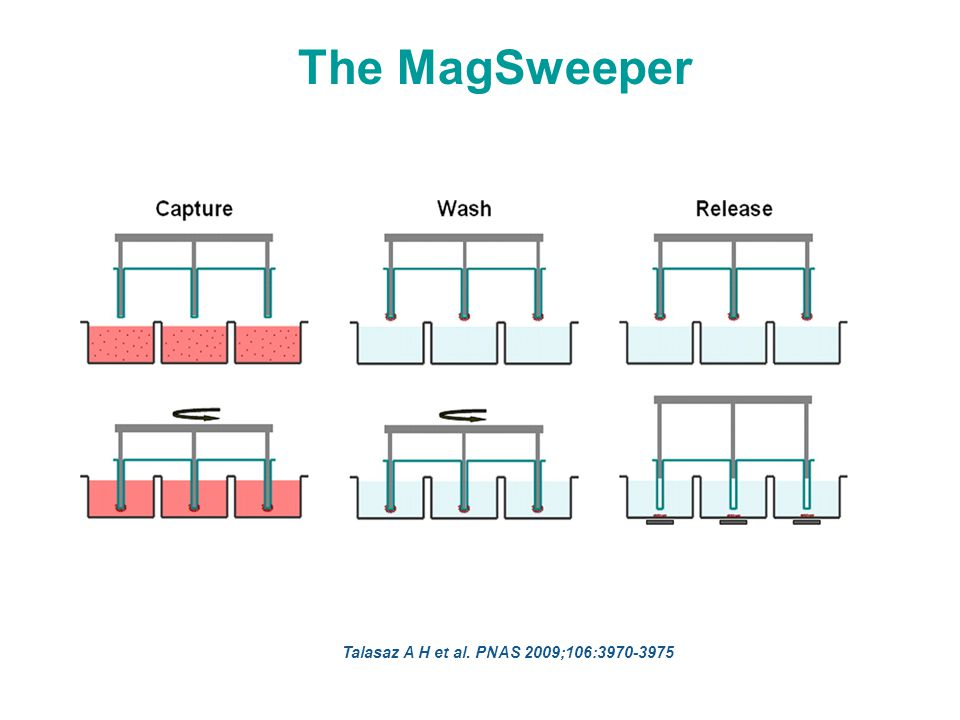 Schematic of the MagSweeper process. Talasaz A H et al. PNAS 2009;106:3970-3975 The MagSweeper