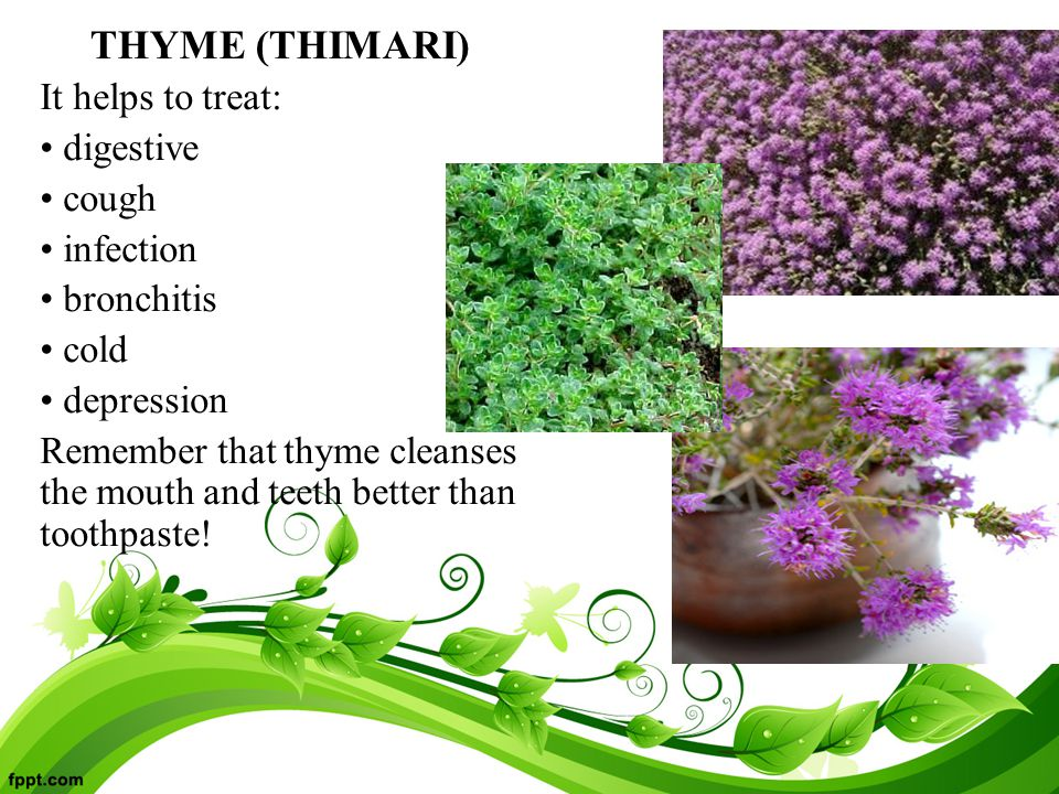 THYME (THIMARI) It helps to treat: digestive cough infection bronchitis cold depression Remember that thyme cleanses the mouth and teeth better than toothpaste!