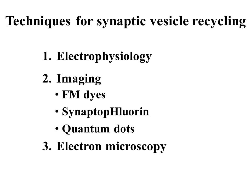 Techniques for synaptic vesicle recycling 1.Electrophysiology 2.Imaging 3.Electron microscopy FM dyes SynaptopHluorin Quantum dots