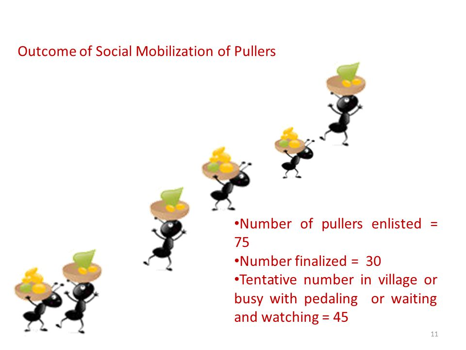 Outcome of Social Mobilization of Pullers Number of pullers enlisted = 75 Number finalized = 30 Tentative number in village or busy with pedaling or waiting and watching = 45 11