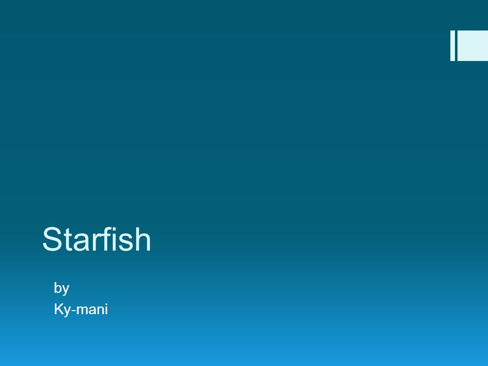Starfish by Ky-mani