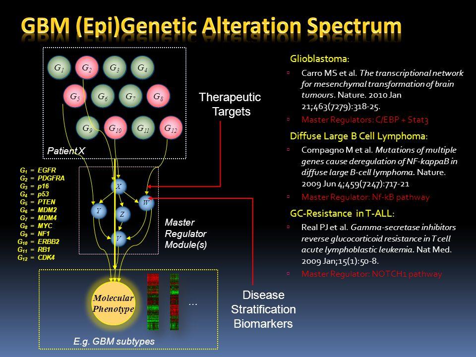 G1G1 G1G1 G2G2 G2G2 G3G3 G3G3 G4G4 G4G4 G5G5 G5G5 G6G6 G6G6 G7G7 G7G7 G8G8 G8G8 G 10 G 11 G 12 Patient X Molecular Phenotype E.g. GBM subtypes G9G9 G9