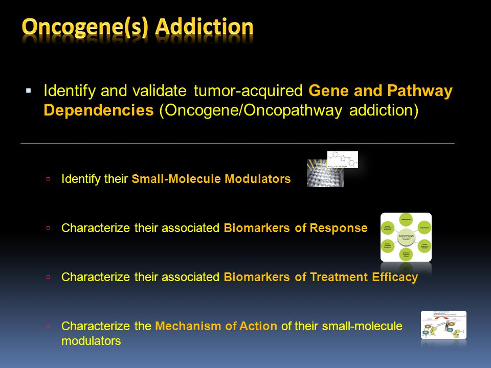  Identify and validate tumor-acquired Gene and Pathway Dependencies (Oncogene/Oncopathway addiction)  Identify their Small-Molecule Modulators  Characterize their associated Biomarkers of Response  Characterize their associated Biomarkers of Treatment Efficacy  Characterize the Mechanism of Action of their small-molecule modulators