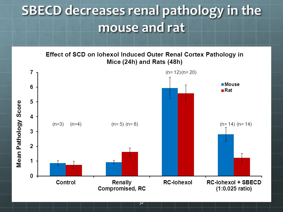 SBECD decreases renal pathology in the mouse and rat 32